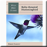 Wild Bird Guides Ruby Throated Hummingbird